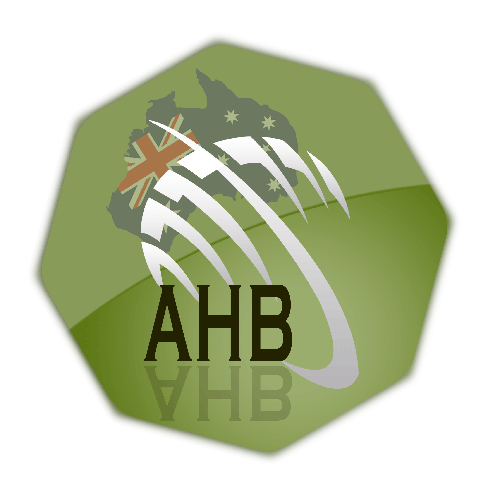 AHB SOFTWARE SERVICES